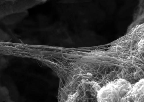 Nanotubo de Carbono - aline de oliveira pb