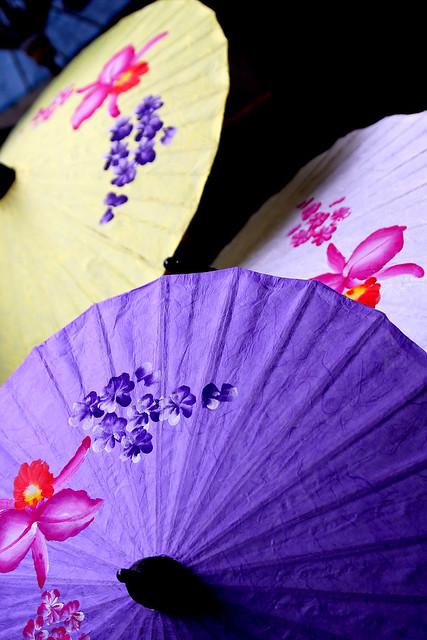 Thailand.com-Umbrella festival, Chiang Mai