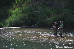 fishing, water, river, recreation, outdoor recreation, recreational fishing, fly fishing,