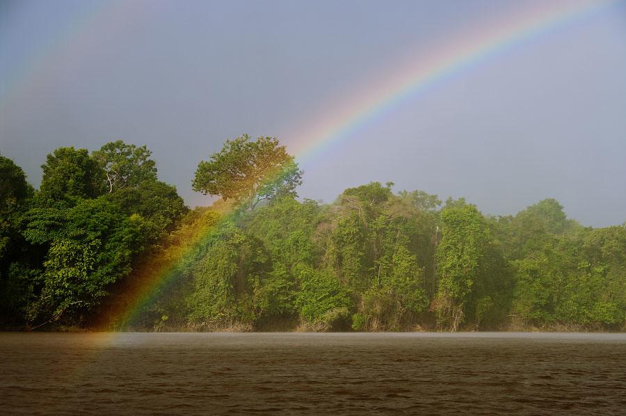 Река Нанай, приток Амазонки. Рыбалка в джунглях - авторские путешествия Kartazon Dream