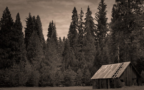 wallpaper sepia barn meadow sierranationalforest soquelmeadow
