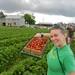 Strawberry Farm by Travis S.