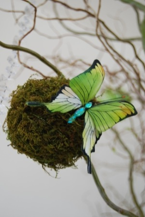 butterfly on moss orb