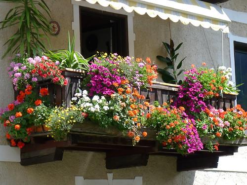 Salottino concorso balconi fioriti giugno pagina 2 for Salottino da balcone