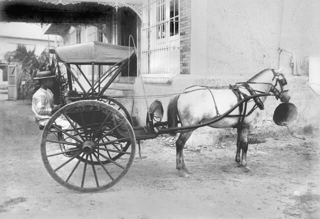 transportation in the 19th century essay