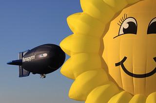 Blimp meets Sonnenblume