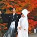 2010 京都 秋:永観堂 紅葉婚禮