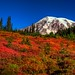 Fallplosion at Mount Rainier