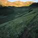 Small photo of Carson Saddle, Lost Trail Creek