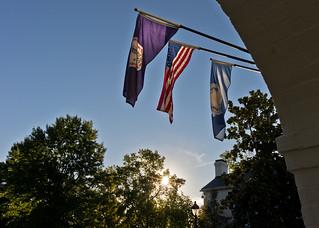 FEI flags