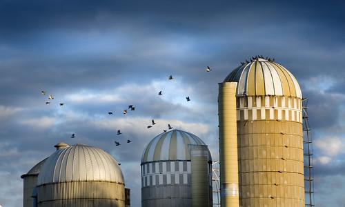 morning sky usa birds wisconsin clouds barn rural sunrise countryside highway farm ominous metallic leeds madison silos 51 top10 sparrows wi us51 flickraward concordians nikonflickraward flickrtravelaward faves2011