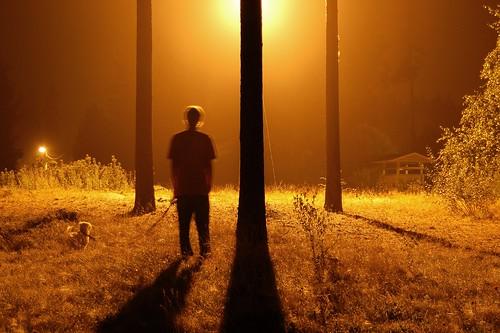 light shadow sky people dog mist tree grass fog pinetree night finland brother jussi miina orimattila