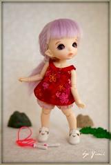 FairyLand PukiFee Icis