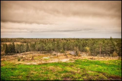 trees sky mountain berg grass clouds forest landscape view horizon lightpole hdr bergö 9ex1ev