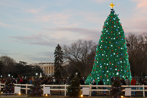 DC Dec 2010 - Visiting the National Christmas Tree