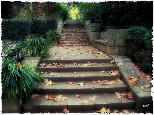 Al final de la escalera jardines labiral montjuic for Escalera de bloque de jardin