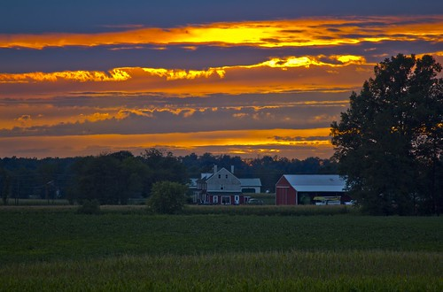 sunset farm