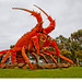 Big lobster by john white photos