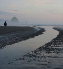 friday beach curves