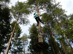 abseiling(0.0), adventure(1.0), tree(1.0), forest(1.0), arborist(1.0),