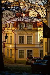Frosty Morning, Tallinn