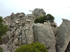 Punta di a Cuperchjata : le sommet