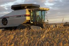 asphalt(0.0), transport(0.0), construction equipment(0.0), bulldozer(0.0), agriculture(1.0), field(1.0), vehicle(1.0), harvest(1.0), crop(1.0), harvester(1.0),