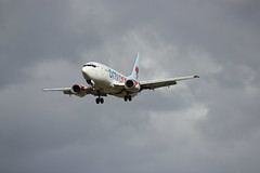 planes 313