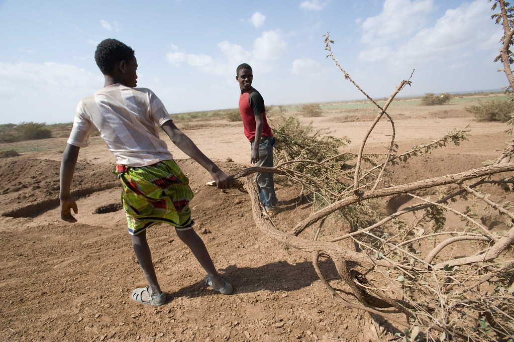 Ethiopia drought: environmental degradation