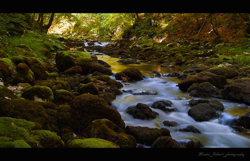 river landscape croatia a200xminolta3570f4x sonya200minolta3570f4