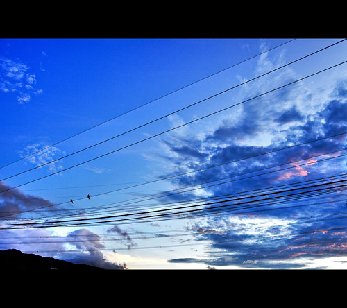 [scenery] division of sky
