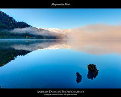 Mapourika Mist
