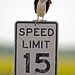 Speed Enforced by Osprey
