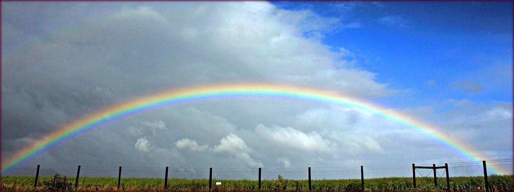 the fenced rainbow