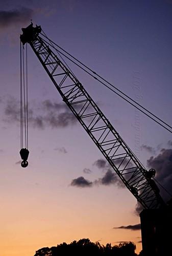 Crane 11