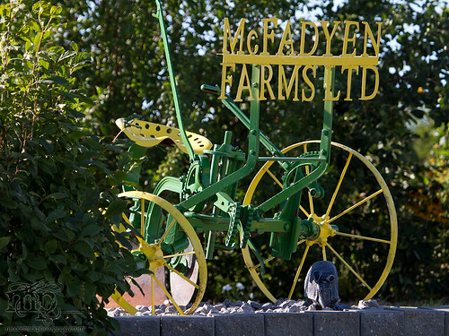 Acadia Valley B&B: Farm signage