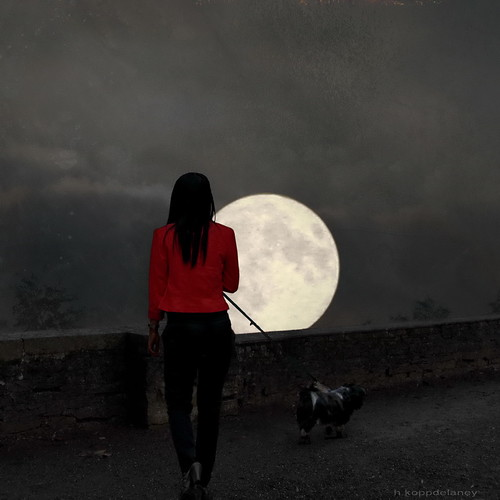 Lady Luna