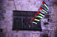 Pal�stinensische Flaggen vor einem Fenster. Photo:  helga tawil souri / flickr Creative Commons Licence Namensnennung, nicht kommerziell, Weitergabe unter gleichen Bedingungen