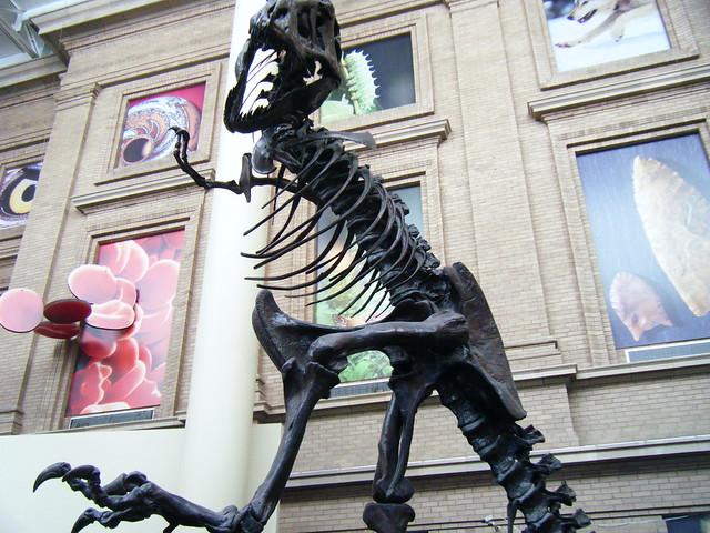 Natural Science Museum Denver Hours