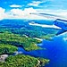 Small photo of Floresta Amazonica
