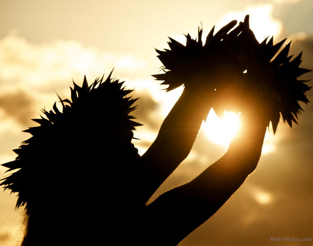 Солнце - Ла