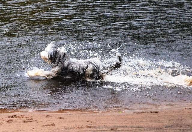 Fun splashing!