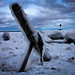 Anchored In Ice by Boreal Bird