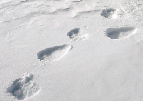 「雪地上留下的腳印  漫畫」的圖片搜尋結果