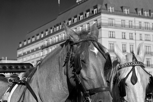 hotels in berlin brandenburger tor