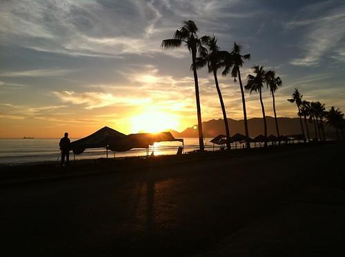 road morning silhouette sunrise palmtrees dili dilitimorleste timorlestetl environmentenv designphotographytraining2011