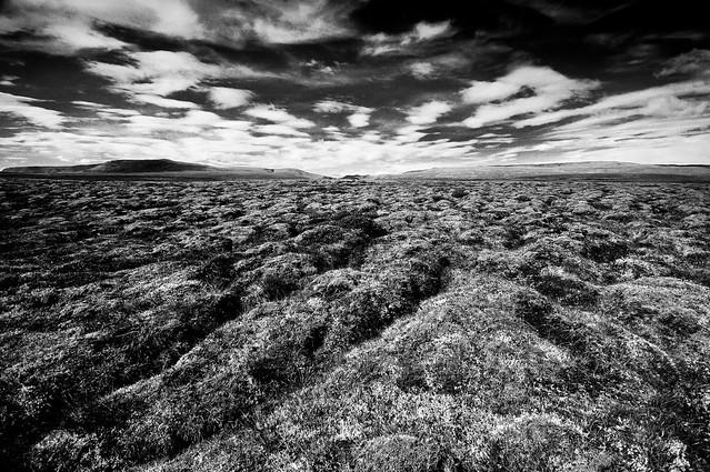 Icelandic landscape (B&W)