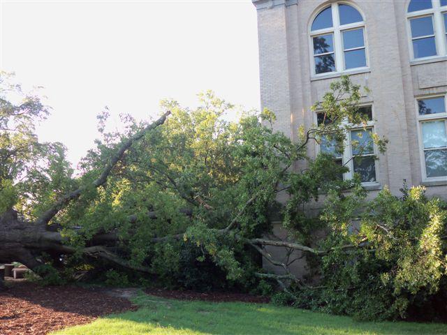 Storm damage Irene 033