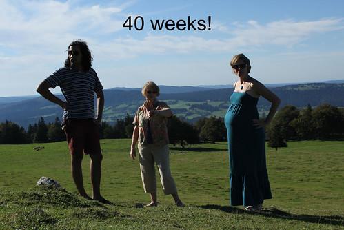 wee grub: 40 weeks