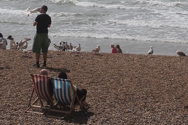 Header of Brighton